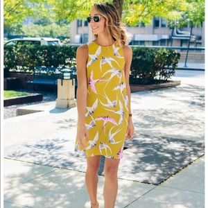 New Ann Taylor Mojave bird print shift dress 0P